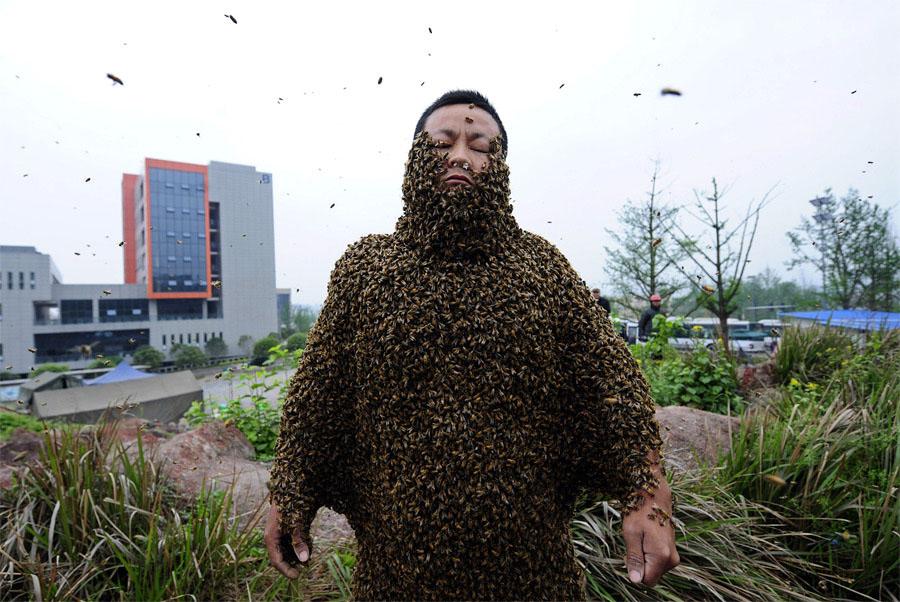 Костюмчик из пчел